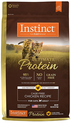 Best dry food for bengal cats uk