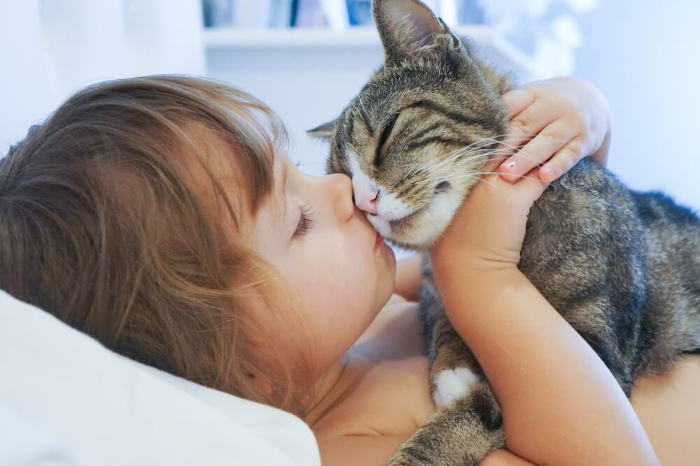 cat and girl (1)