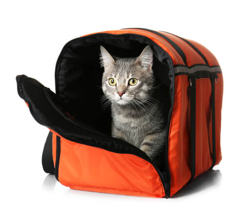 658b190bc7 In this buying guide, you'll learn about the different types of cat carriers  on the market, which qualities set the best carriers apart, and how to  choose ...