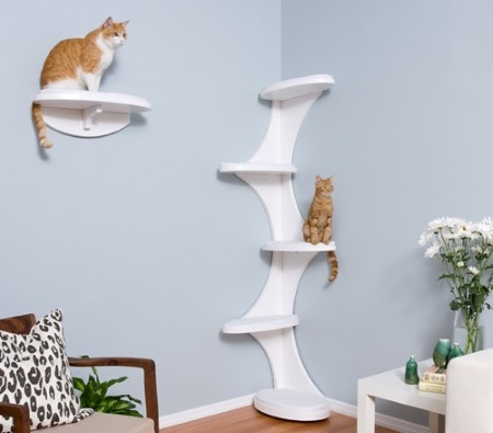 Now you may wonder why would my cat care how i decorate a room but as much as you want to please your cat you want to make this kitty corner enjoyable