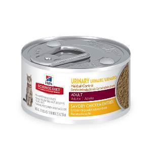 Best Wet Food For Cats With Urinary Issues