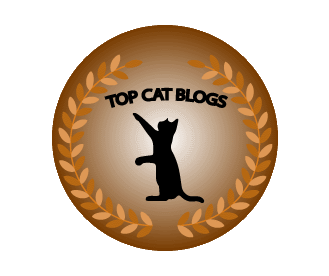 Hey Guys, Weu0027ve Narrowed Down Our Search For The Top Cat Blogs Around The  World Worth Checking Out. Our Criteria Included: Topic Related Content, ...