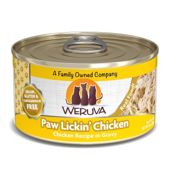 Best High Protein Low Carb Canned Cat Food (April,2021)