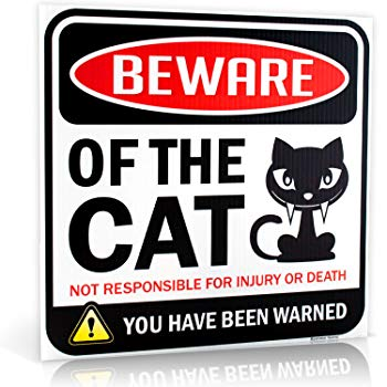 "Beware of Cat Warning Sign | 12"" x 12"" 