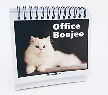 Office Gift For Cat Lovers - Moodycards