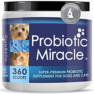 NUSENTIA Probiotic Miracle Dog Probiotics for Dogs