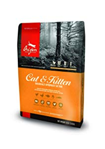 Orijen Dry Cat And Kitten Food