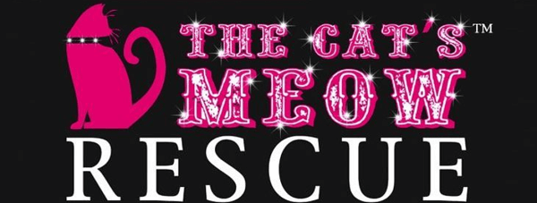 The Cat's Meow Rescue