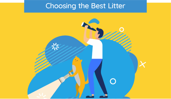 choosing the best cat litter