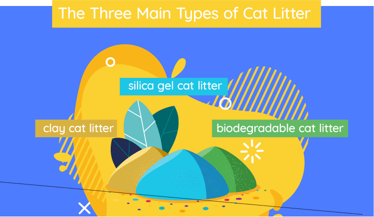 types_of_litter