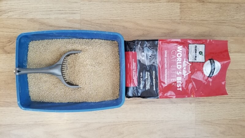 Unbiased World S Best Cat Litter Review 2019 We Re All