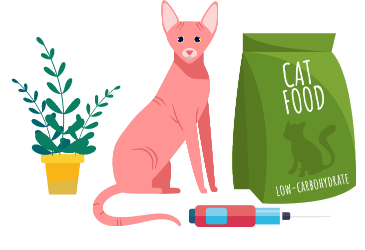 safe diet for a cat with diabetes