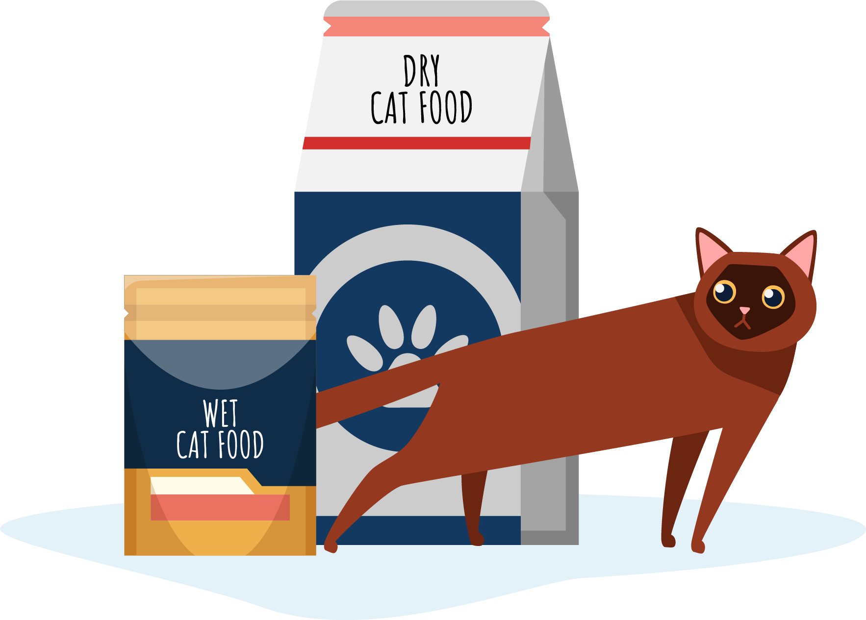 Which is better for my cat; dry food or wet food