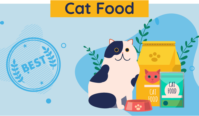 10 Best Cat Foods In 2021 Unbiased Review We Re All About Cats
