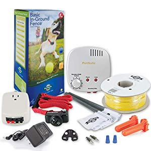 PetSafe Basic In-Ground Dog and Cat Fence