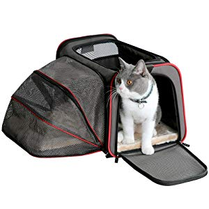 Petsfit Airplane Cabin Travel Expandable Pet Carrier for Dog and Cat