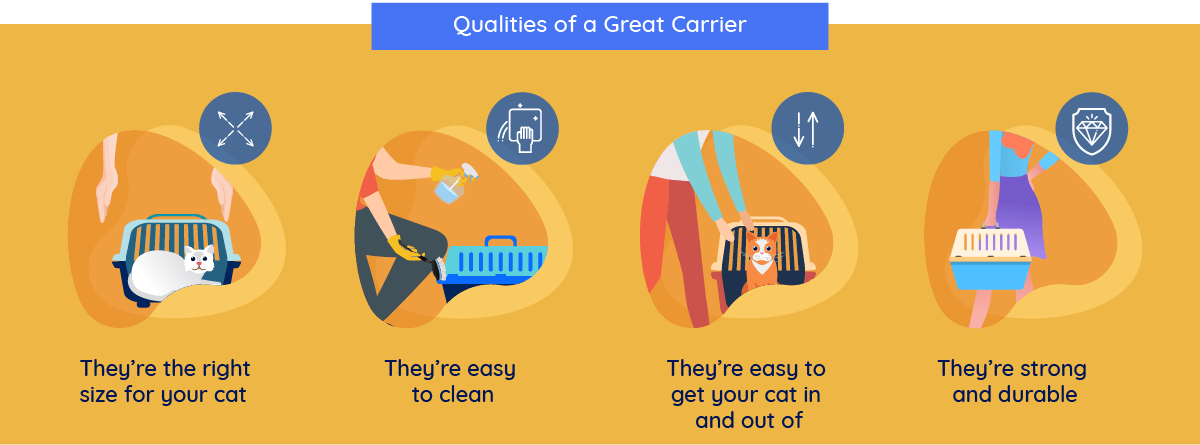 best per carrier for cats