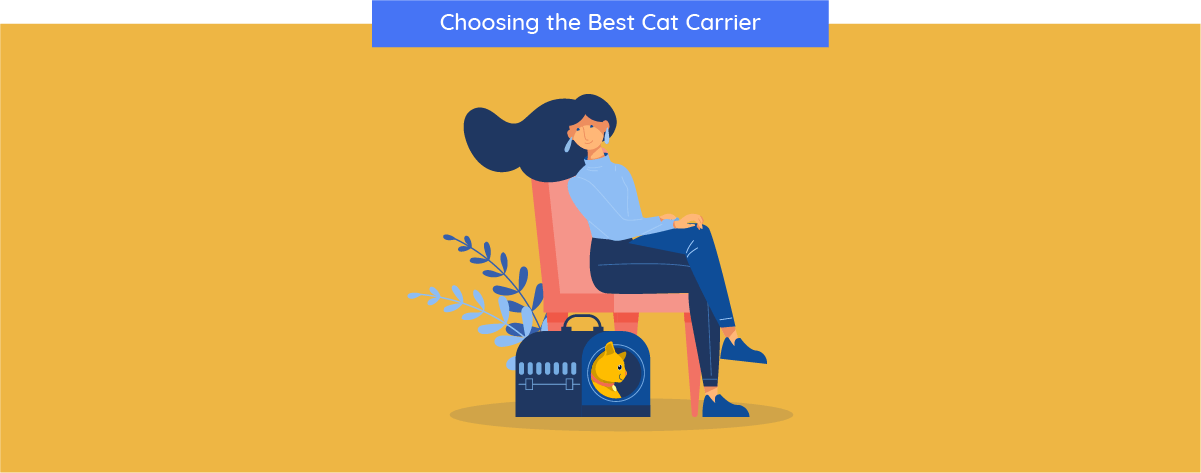 choosing carrier