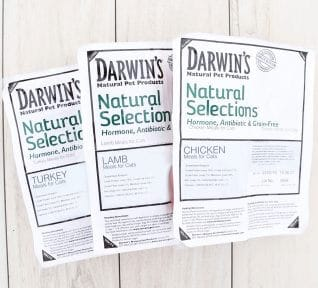Darwin's Natural Pet Natural Selections™ Lamb Raw Cat Food