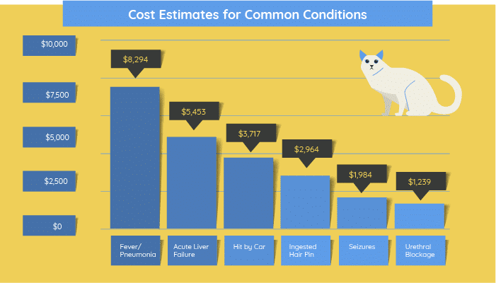 breakdown of how much it might cost to treat common conditions.