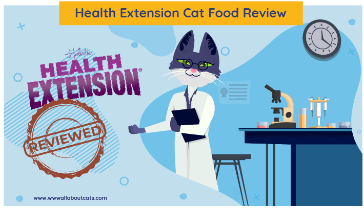 health extension cat food review