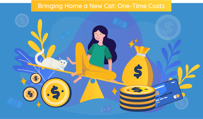 one time cat cost