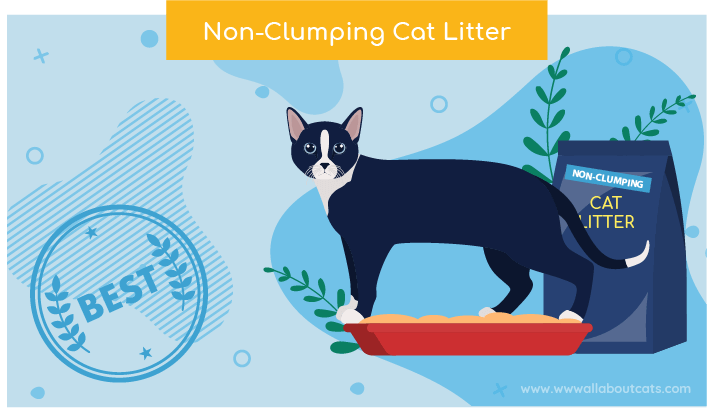 non clumping cat litter