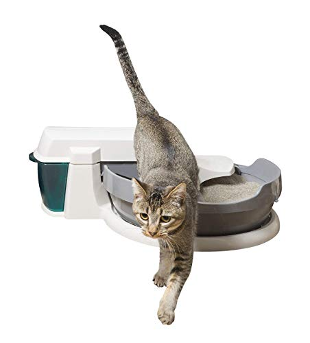 PetSafe Simply Automatic Clean Litter Box