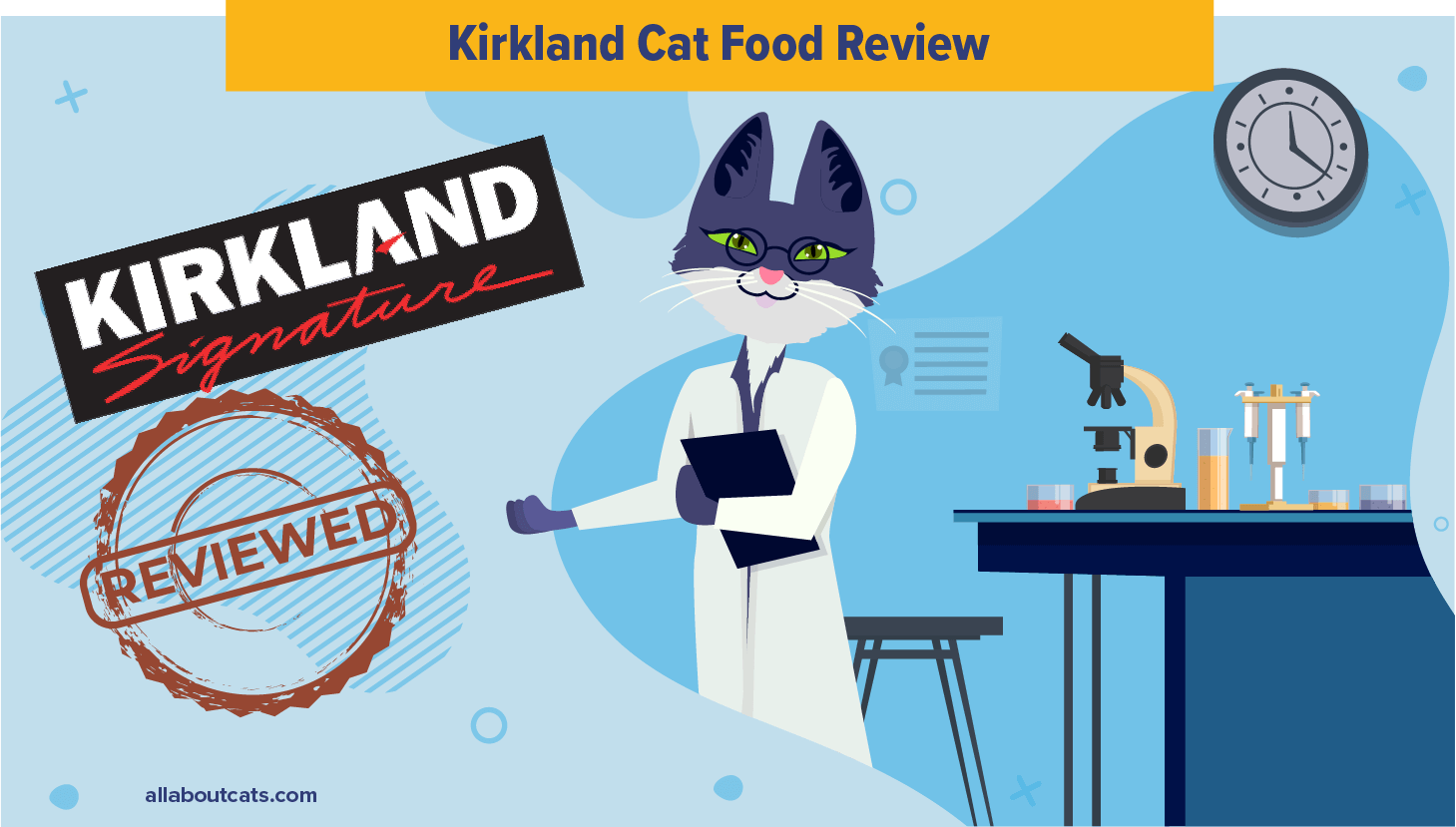Unbiased Kirkland Cat Food Review 2021 We Re All About Cats