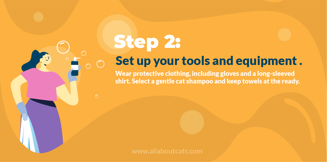 How to Give a Cat a Bath Step 2 Set Up Tools