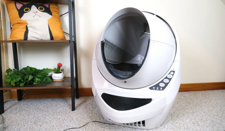 Litter Robot 3 Connect Review: We Tested It