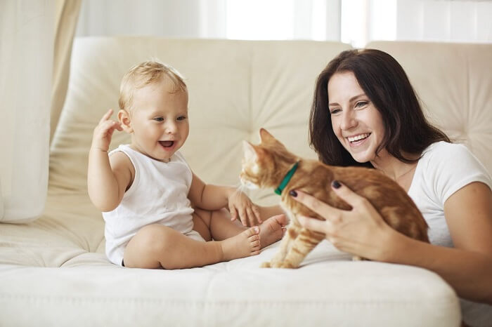 keeping baby and cat safe