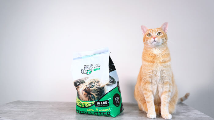 TofuKitty Cat Litter Featured Image