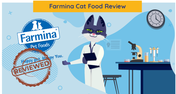 Unbiased Farmina Cat Food Review 2021 We Re All About Cats