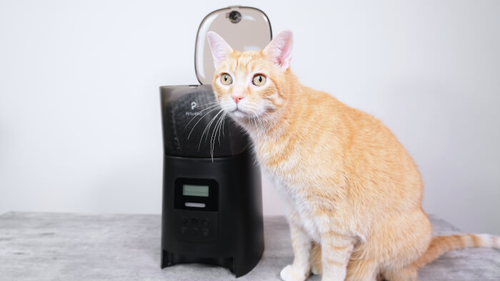 Petlibro Automatic Pet Feeder Review Feature